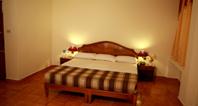 hotel-jasmine-palace-kovalam-kerala-india-accommodation